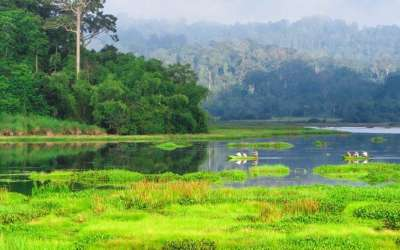 Cat Tien National Park Tour From Sai Gon 3 Days